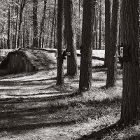 В партизанском лагере. :: Андрий Майковский