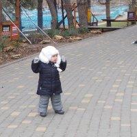Гуляка в парке :: Александр Скамо