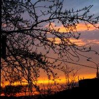 Красивый закат в Москве :: Татьяна Колганова