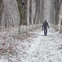 снег идет... :: юрий иванов