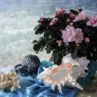 Из серии Я мечтала о морях и кораллах :: Ирина Приходько
