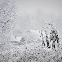 Снегопад в Молочном :: Валерий Талашов