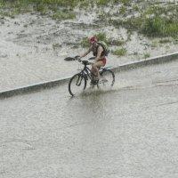 Велосипедистка :: Геннадий Григорьев