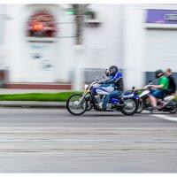 Вольные гонщики местного масштаба :: Людмила Фил