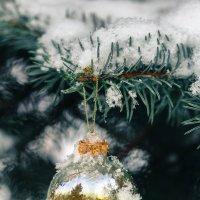 Новогодний шар :: Татьяна Тимофеева