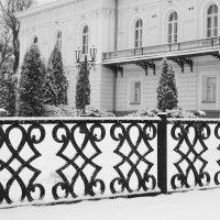 утренний снег :: Юрий Гайворонский