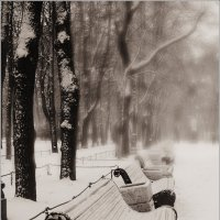 парк :: Galina Belugina