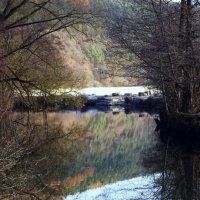 На реке.. :: Эдвард Фогель