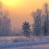 Зимний вечер :: Екатерина Торганская