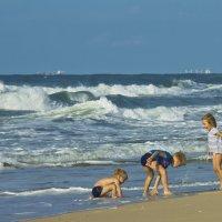 Декабрь, море, солнце! :: Ефим Журбин