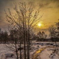 Начало зимы 2 :: Андрей Дворников