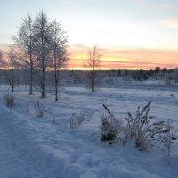 Здравствуй,полярная ночь :: Ольга