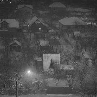 Зимний сон :: Лидия Цапко
