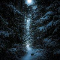 Лунная дорожка :: Алексей Строганов