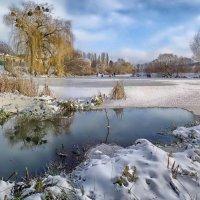 зима..снег..солнце... :: юрий иванов