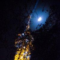 Вершина эйфелевой башни :: Наталия