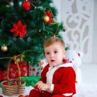 Юный Санта :: Ксения