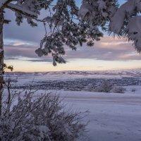 Зимний вечер в Крыму :: Ольга