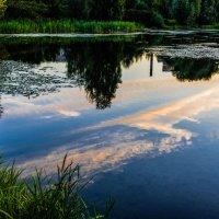 Раннее утро в парке Митино. :: Владимир Безбородов