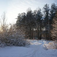 Начало декабря :: Елена Павлова (Смолова)