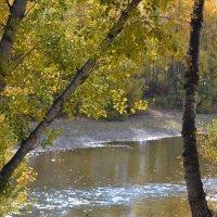 Осенняя река. :: юрий Амосов