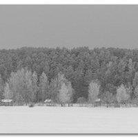 Зима :: Михаил Цегалко