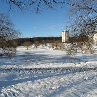 Пришла зима :: Оксана Кошелева