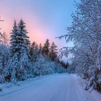 Зимняя дорога :: Фёдор. Лашков