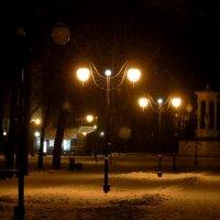 В парке .Декабрь-2 :: Андрей Хомяков