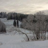 Серый зимний день :: Виктор Бондаренко
