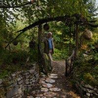 Сказка старого леса :: Anatoliy Pavlov