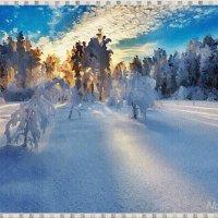 Игра света и тени на снегу :: Лидия (naum.lidiya)