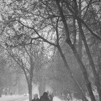 Москва, 1-я Парковая ул. Снегопад. :: Игорь Герман