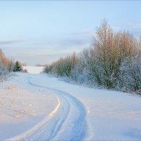 Утро зимнее, холодное... :: Александр Никитинский