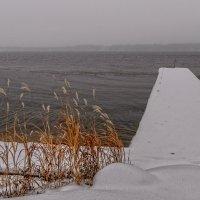 о зиме... :: Galina