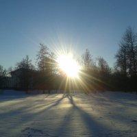Солнце :: Сапсан