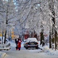 Стрельна. Красоты зимы на безымянной улице... :: Владимир Ильич Батарин