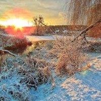 зимнее утро.. :: юрий иванов