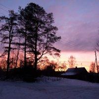 7/12/16 purple morning :: Юрий Бондер