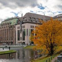 Старый торговый центр рядом с парком :: Witalij Loewin