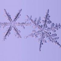 Танец снежинок :: Тимофей Черепанов