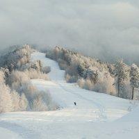 Спуск с горы Церковка близ Белокурихи. :: Ольга