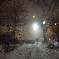 Метель в предпраздничном городе :: Владимир Макаров