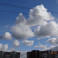 Дед Мороз на тройке спешит в Москву на Новый год! :: Алексей Рязанцев
