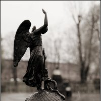 Ангел (копия) :: Galina Belugina