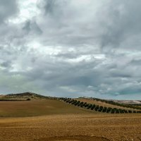 Spain 2016 2 :: Arturs Ancans
