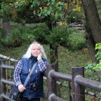 Нара, Япония, октябрь 2016 г. :: Tatiana Belyatskaya