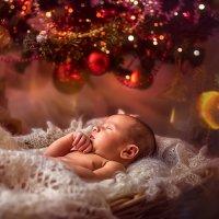 рождественский сон :: Кира Екименко