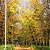 Осень... :: Алексей Агалаков