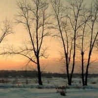 Зимний вечер :: Евгений Карский